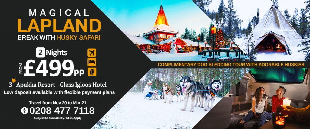 Magical Lapland break with Husky Safari