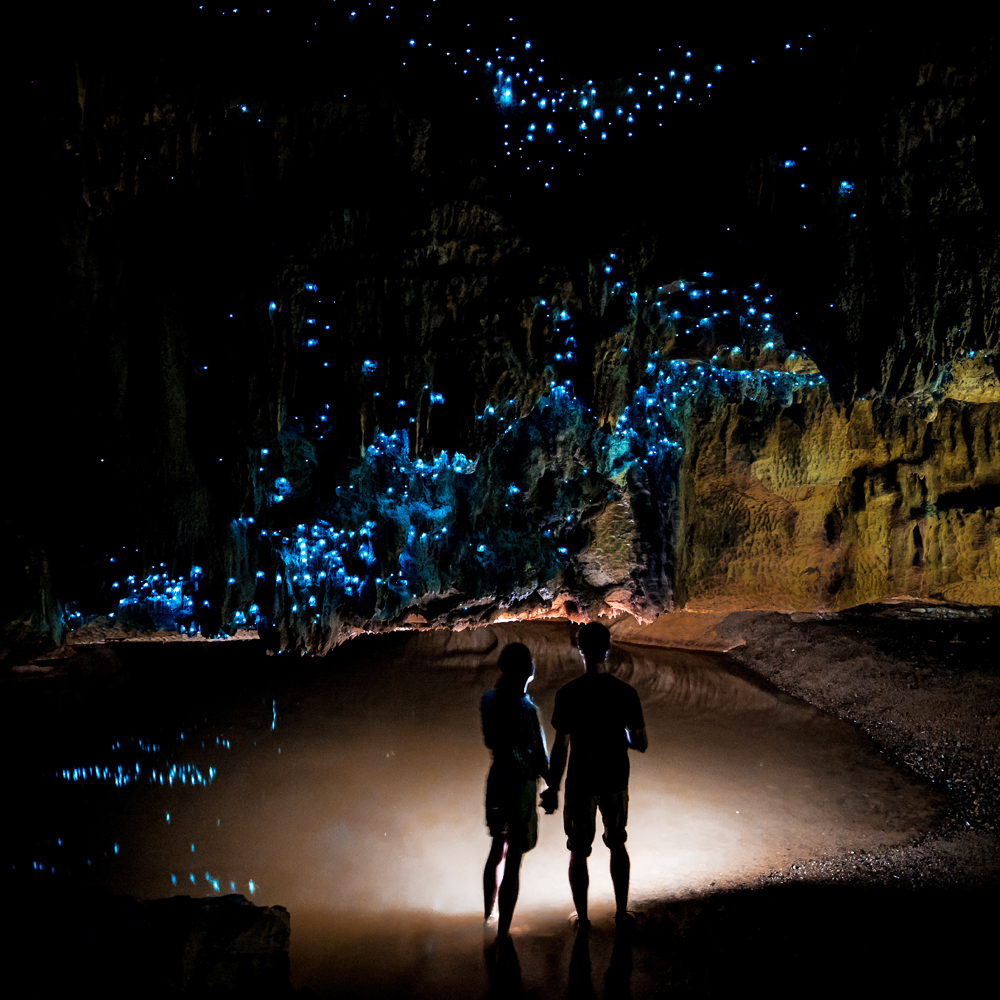 The most beautiful places in the world - The Gloworm Caves, Waitomo, New Zealand